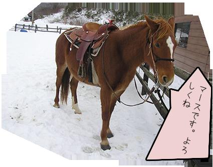 horsegirl5-1