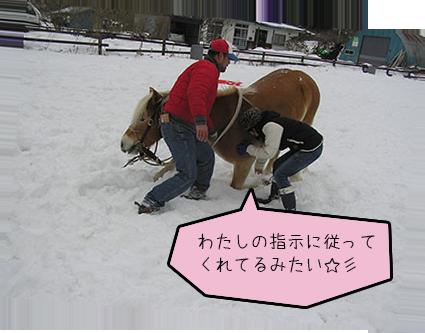 horsegirl5-11