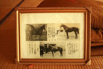horsegirl11-6