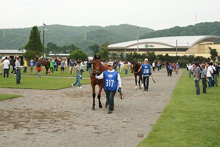 horseracegirl11-13