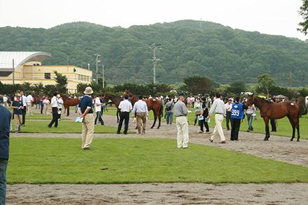 horseracegirl11-15