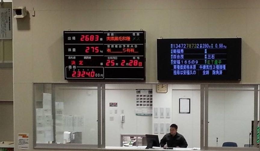 2013.11.5市場230万電光掲示板