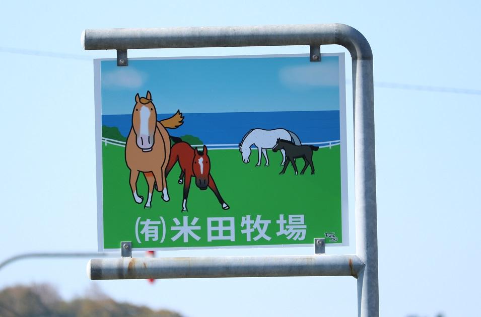 米田牧場海側