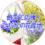 【キャンペーン】コロナに負けるな!第4弾「飾って応援!ひだかの花産地~花いっぱいプロジェクト」