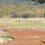 【近況】米の集荷実績報告とタウシュベツ橋梁